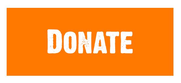 Donate Button Rabbi Alon Anava